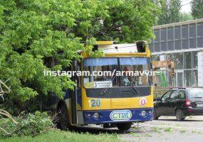 В Армавире дерево упало на проезжающий троллейбус