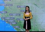 Погода в Краснодаре и крае: 19 июня температура воздуха достигнет 35 °С