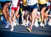 В сочинском забеге «Олимпийская миля» приняли участие более 250 человек