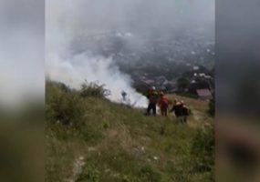 В Новороссийске потушили лесной пожар