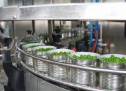 Консервные заводы Кубани изготовили более 100 млн банок зеленого горошка