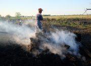 На Кубани объявили экстренное предупреждение по чрезвычайной пожароопасности