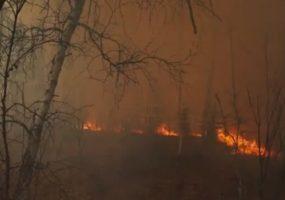 На Кубани продлили экстренное предупреждение по пожароопасности