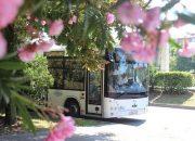 В Сочи в дни «Кинотавра» общественный транспорт будет ходить до 2:00