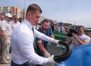 В реку Кубань впервые выпустили крупных особей белуги, русского осетра и севрюги