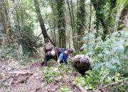 За минувшие выходные в Сочи спасатели дважды помогли туристам