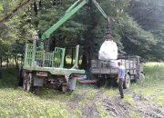 В Кавказский заповедник завезли несколько тонн соли