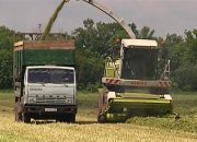 На Кубани стартовал конкурс грантовой поддержки для начинающих фермеров