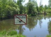 Водоемы Крымского района назвали непригодными для купания