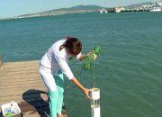 На Черноморском побережье специалисты Роспотребнадзора взяли пробы морской воды