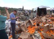 В Краснодаре уничтожили 5 тонн запрещенных к ввозу апельсинов из Испании