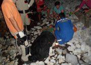 В Геленджике туристка из Хабаровска упала со скалы