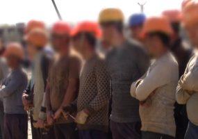Правоохранители Кубани выявили более 4,5 тыс. незаконных мигрантов с начала года