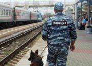В Новороссийске на вокзале овчарка Лана нашла у девушки пакет с «солью»