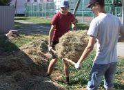 В Славянске-на-Кубани старшеклассники помогают рабочим в ремонте школы