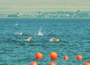 В Темрюкском районе прошел чемпионат России по плаванию на открытой воде