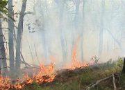 На Кубани спасатели объявили четвертый класс пожароопасности