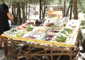 В Анапе проводят рейды по выявлению точек незаконной торговли