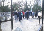 В Краснодаре 8 июня откроют ярмарку путевок в античные полисы