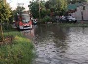 В Краснодаре из-за лужи на Садовой остановились трамваи