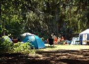 На Кубани в палаточных лагерях летом отдохнут 800 трудных подростков
