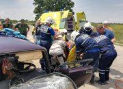 В Славянском районе водитель из-за укуса пчелы попал в ДТП
