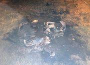 В Краснодаре в ДТП погиб пассажир мотоцикла