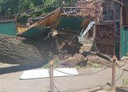 В центре Краснодара дуб упал на постройки