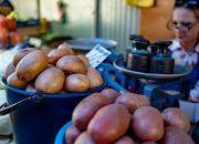 На Кубани проверят правильность весов на придорожных ярмарках