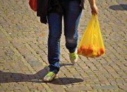 Опрос: 85% жителей России готовы отказаться от пластиковых пакетов