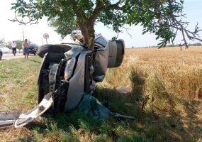 В Темрюкском районе автомобиль слетел с трассы и «обнял» дерево
