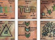 Немецкие ученые придумали татуировку для диабетиков