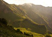 В Сочи открыли экомаршрут «Альпийские луга»