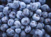 Роспотребнадзор дал советы по выбору фруктов и ягод