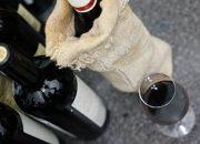 Ученые: красное вино спасает от негативных последствий невесомости