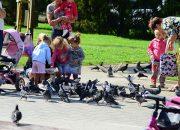 Какие дети умнее — городские или деревенские. Мнение ученых