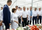 Кондратьев посетил предприятия Красноармейского района