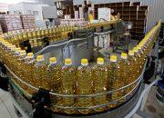 На Кубани увеличили экспорт масла, муки и круп