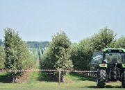Кубань заняла первое место в ЮФО по объему субсидируемого агрострахования