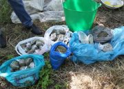 На Кубани во время спецоперации мужчина продал полицейским 1,4 кг марихуаны