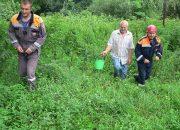 В Мостовском районе спасатели помогли выбраться из леса грибнику