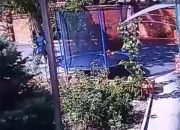 На Кубани мужчина в маске проник в частный дом и напал с ножом на хозяев. Видео