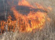 В Краснодаре особый противопожарный режим будет действовать до 15 сентября