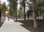 Замминистра строительства и ЖКХ оценил благоустройство зеленых зон в Краснодаре