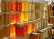Врачи рассказали о безопасном для здоровья количестве меда