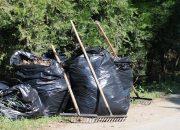 Краснодар присоединится к экологической акции «Зеленая Россия»