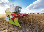 На Кубани урожай сои соберут с площади более 200 тыс. га