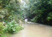 В Сочи сбросили бытовые отходы в реку через старый канализационный коллектор