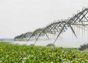 Кубанским аграриям предоставят субсидии на мелиорацию земель