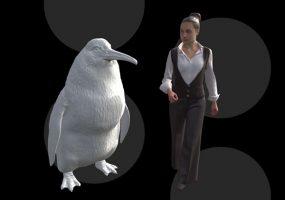 Пингвилла: в Новой Зеландии нашли останки пингвина-гиганта
